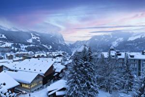Фото Швейцария Зима Дома Горы Снегу Ели Wengen город