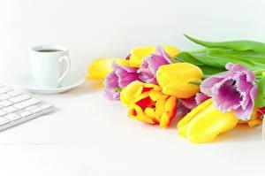 Фото Тюльпаны Букеты Кофе Разноцветные Чашке Цветы Еда