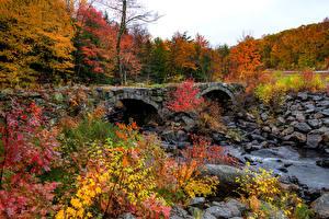 Картинка США Осень Лес Мост Камни Ветки Woodstock, Vermont Природа