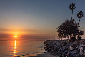 Фотографии Америка Берег Рассветы и закаты Камни Калифорнии Деревьев Пальмы Cabrillo Beach in San Pedro Природа
