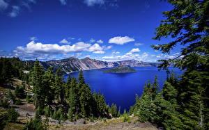 Обои США Озеро Лес Остров Парк Oregon, Crater Lake National Park Природа