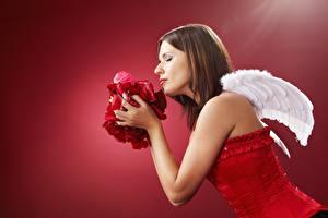 Фотографии Ангел Красный фон Крылья Сбоку Шатенка Корсет Руки Лепестки молодые женщины
