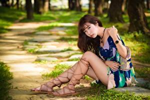 Картинки Азиаты Размытый фон Шатенка Сидит Платье Руки Ног молодые женщины