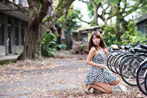 Обои Азиатка Шатенки Размытый фон Платье Велосипеды