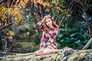 Картинки Азиатка Платье Сидит Размытый фон Взгляд девушка