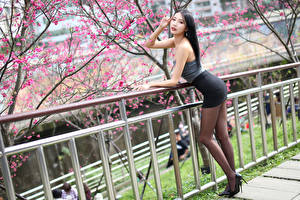Фото Азиатка Цветущие деревья Поза Ноги Юбка Смотрят молодые женщины