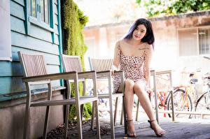 Картинка Азиатки Сидя Размытый фон Платья Взгляд Стулья молодая женщина