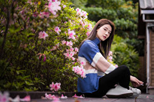 Картинки Азиатка Сидящие Свитере Боке