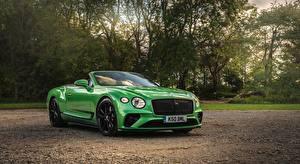 Картинки Bentley Кабриолета Зеленый Спереди Continental GT V8, Convertible (Apple Green), UK-spec, 2020 Автомобили