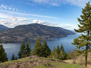 Картинки Канада Реки Холмы Ель Kelowna, British Columbia