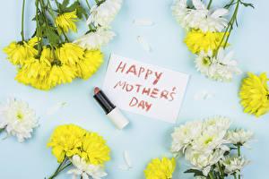 Фото Хризантемы Губная помада День матери Английский Слова Цветы