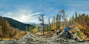 Фотографии Леса Гора Осенние Россия Панорама Сидящие Republic Buryatia Природа