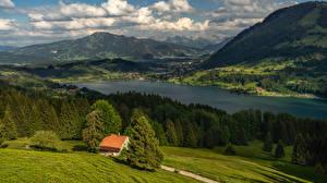 Картинки Германия Гора Озеро Леса Село Ели Allgäu Природа
