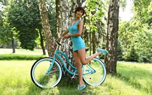 Фотография Траве Велосипеде Брюнеток Поза Платье Рука Ног Березы молодая женщина