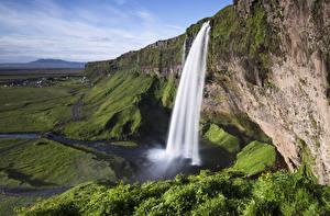 Фотография Исландия Водопады Траве Скале Seljalandsfoss, South Iceland Природа
