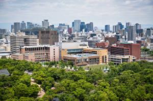 Фото Япония Дома Дерева Osaka Города