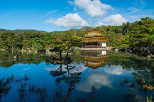 Фото Япония Храм Пруд Киото Дерево Kinkaku-ji, Rokuon-ji, Kita