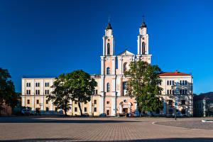 Фотографии Литва Каунас Церковь Городской площади Деревья Jesuit Church of St. Francis Xavier