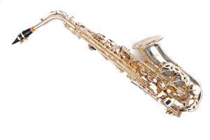 Картинки Музыкальные инструменты Белый фон saxophone Музыка