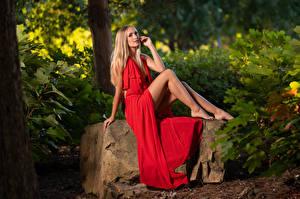 Фотография Блондинок Блондинка Модель Сидит Платье Смотрит Молодые женщины