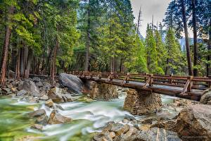 Фотография Реки Мост Камень Парк США Дерево Йосемити Калифорния Природа