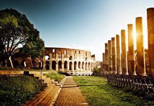 Картинки Рим Италия Колизей Развалины Памятники Рассветы и закаты Трава Лестницы Дерево