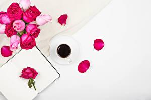 Фото Роза Кофе Белом фоне Шаблон поздравительной открытки Чашке Лепестки цветок Еда