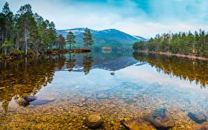 Обои Россия Лес Озеро Камень Karelia