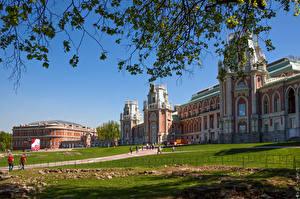 Фотографии Россия Парк Москва На ветке Дворец Трава Музей Tsaritsyno город