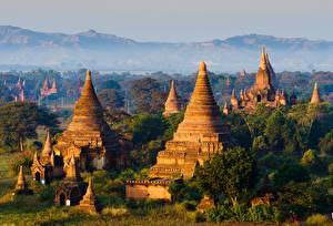 Картинки Храм Туман Дерево Bagan, Myanmar