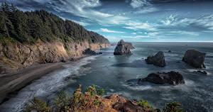 Фотография США Берег Скала Oregon Природа