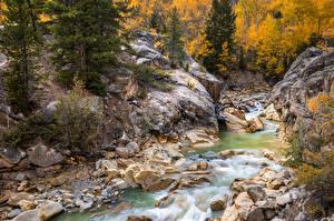 Картинка США Лес Осень Река Камень Colorado, Twin Lakes Природа