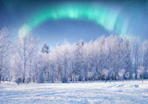 Картинка Зима Снеге Полярное сияние Деревья Природа