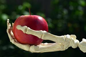 Фотография Яблоки Размытый фон Кость Скелет Красный Рука