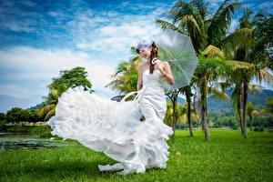 Обои Азиаты Платье Невеста Зонт Пальм Девушки