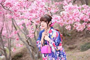 Фото Азиаты Цветущие деревья Сумка Кимоно Взгляд Девушки