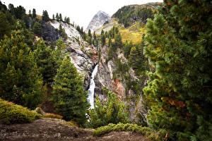 Фотографии Австрия Горы Водопады Ель Скала Obergurgl Tyrol