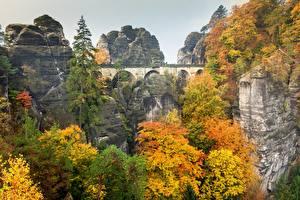 Фотография Осень Мост Парки Германия Скала Bastey, Saxon Switzerland, Elbe Sandstone Mountains Природа