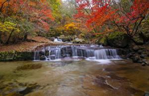 Картинка Осень Река Камни Мох Природа