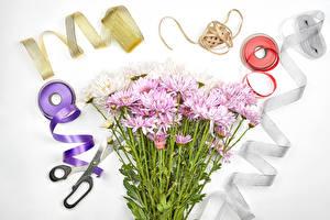Фотография Хризантемы Ножницы Серый фон Ленточка цветок