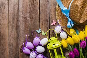 Картинка Пасха Тюльпаны Яйцо Доски Шляпы Цветы
