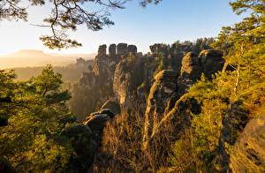 Фотография Германия Гора Скалы Деревья Basteigebiet Природа