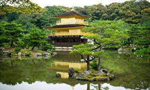 Обои Япония Киото Храм Пруд Деревья Kinkakuji