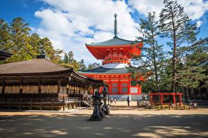 Картинки Япония Храм Дерева Koyasan, Wakayama Города