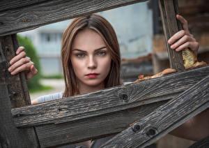 Фотография Лицо Доски Смотрит Klaudia Latto молодые женщины