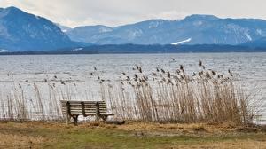 Фотография Озеро Германия Горы Бавария Траве Скамья Chiemgau Природа