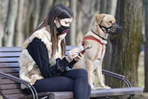 Картинки Маски Коронавирус Скамья Вдвоем Шатенки Сидит Руки Смартфоны молодые женщины