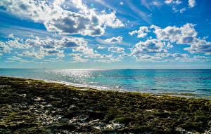 Фотография Море Побережье Небо Облака