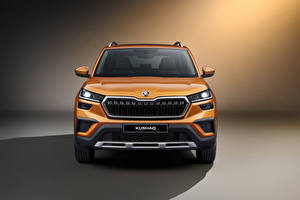 Обои Skoda CUV Спереди Металлик Kushaq, India 2021 автомобиль