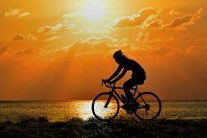 Фотографии Рассветы и закаты Сбоку Силуэт Велосипеды Едущий спортивный